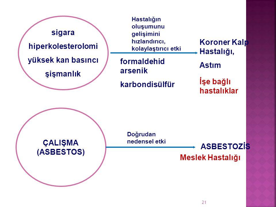 sigara hiperkolesterolomi yüksek kan basıncı şişmanlık Koroner Kalp Hastalığı, Astım formaldehid arsenik karbondisülfür ÇALIŞMA (ASBESTOS) ASBESTOZİS Hastalığın oluşumunu gelişimini hızlandırıcı, kolaylaştırıcı etki Doğrudan nedensel etki Meslek Hastalığı İşe bağlı hastalıklar 21