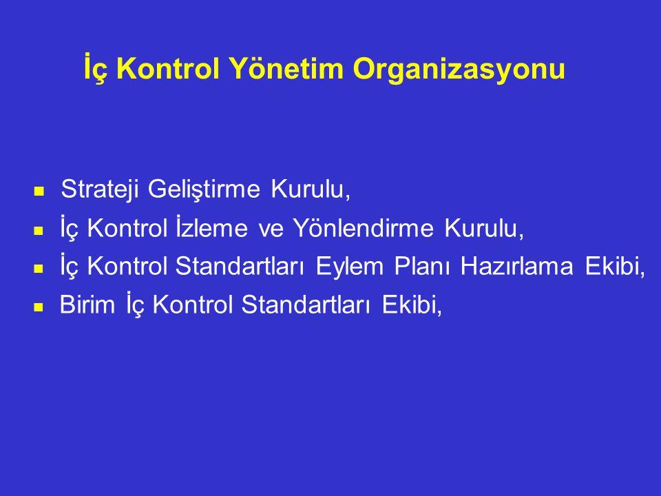 İç Kontrol Yönetim Organizasyonu Strateji Geliştirme Kurulu, İç Kontrol İzleme ve Yönlendirme Kurulu, İç Kontrol Standartları Eylem Planı Hazırlama Ek