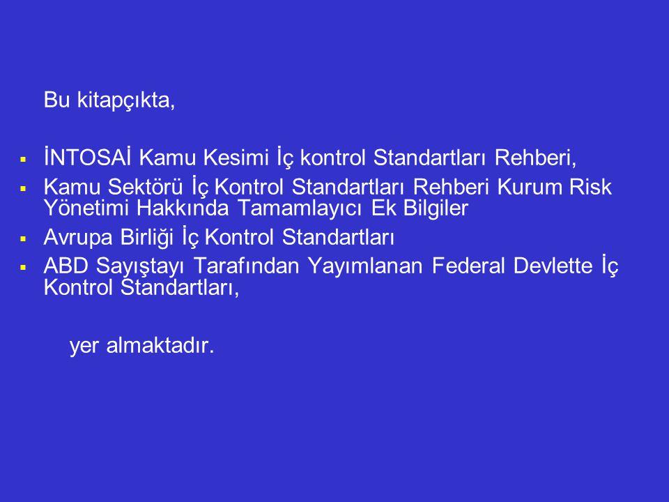 Bu kitapçıkta,  İNTOSAİ Kamu Kesimi İç kontrol Standartları Rehberi,  Kamu Sektörü İç Kontrol Standartları Rehberi Kurum Risk Yönetimi Hakkında Tamamlayıcı Ek Bilgiler  Avrupa Birliği İç Kontrol Standartları  ABD Sayıştayı Tarafından Yayımlanan Federal Devlette İç Kontrol Standartları, yer almaktadır.