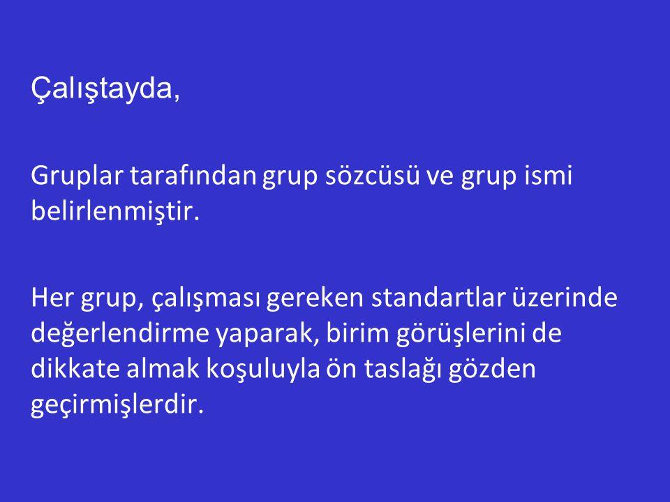 Çalıştayda, Gruplar tarafından grup sözcüsü ve grup ismi belirlenmiştir. Her grup, çalışması gereken standartlar üzerinde değerlendirme yaparak, birim