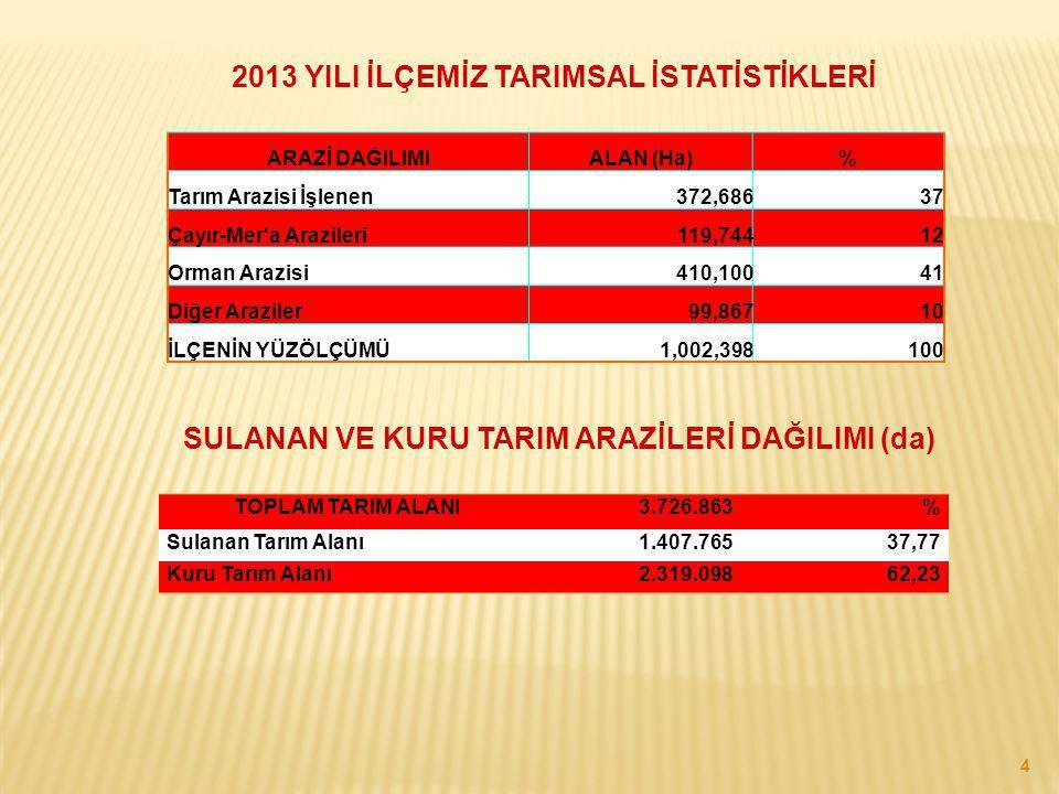 4 ARAZİ DAĞILIMIALAN (Ha)% Tarım Arazisi İşlenen372,686 37 Çayır-Mer'a Arazileri 119,744 12 Orman Arazisi 410,100 41 Diğer Araziler 99,867 10 İLÇENİN