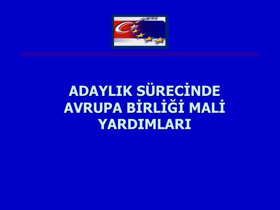 ADAYLIK SÜRECİNDE AVRUPA YATIRIM BANKASI KREDİLERİ Türkiye'de AYB kredilerinin koordinasyonu Hazine Müsteşarlığı tarafından yapılmaktadır...