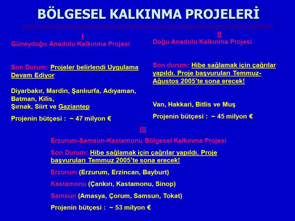 BÖLGESEL KALKINMA PROJELERİ ııı Erzurum-Samsun-Kastamonu Bölgesel Kalkınma Projesi Son Durum: Hibe sağlamak için çağrılar yapıldı. Proje başvuruları T