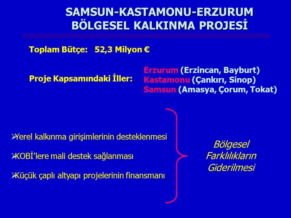 SAMSUN-KASTAMONU-ERZURUM BÖLGESEL KALKINMA PROJESİ  Yerel kalkınma girişimlerinin desteklenmesi  KOBİ'lere mali destek sağlanması  Küçük çaplı alty