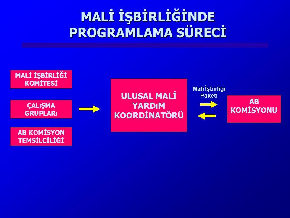 2004 YILI PROJELERİ PROJENİN ADISORUMLU KURUM/KURULUŞLAR Bulgaristan ile Sınır Ötesi İşbirliği (Küçük Ölçekli Ortak Proje Fonu) DPT Müsteşarlığı Türkiye-Yunanistan Sınır Ötesi İşbirliği DPT Müsteşarlığı Dışişleri Bakanlığı AB nin Eğitim ve Gençlik Programları ile 6.
