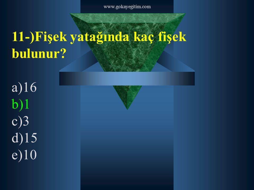 www.gokayegitim.com 11-)Fişek yatağında kaç fişek bulunur? a)16 b)1 c)3 d)15 e)10