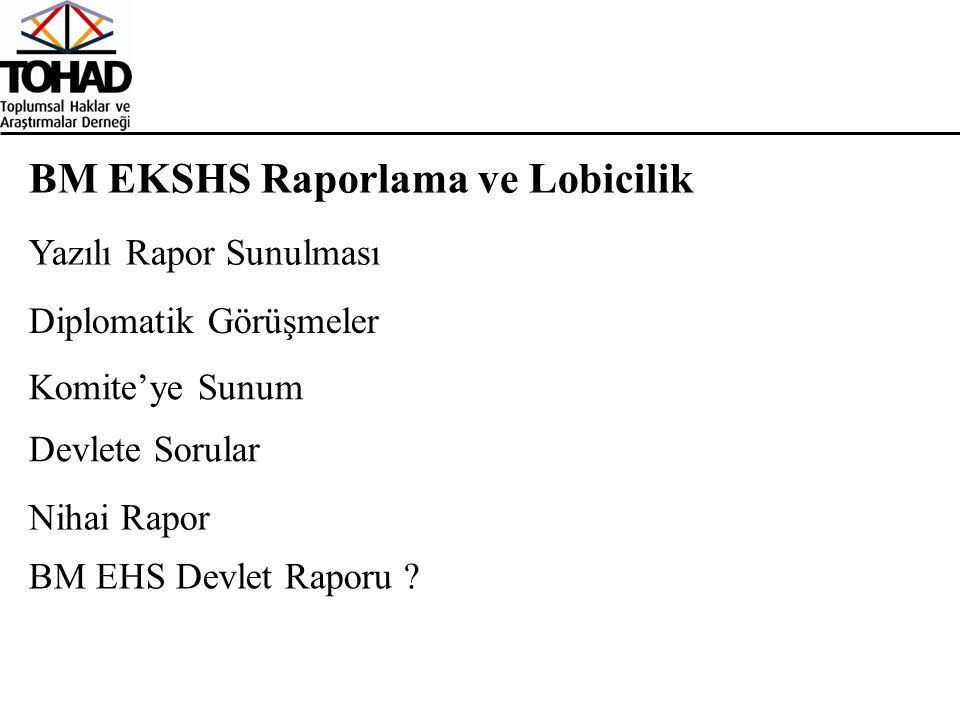BM EKSHS Raporlama ve Lobicilik Diplomatik Görüşmeler Yazılı Rapor Sunulması Komite'ye Sunum Nihai Rapor Devlete Sorular BM EHS Devlet Raporu ?