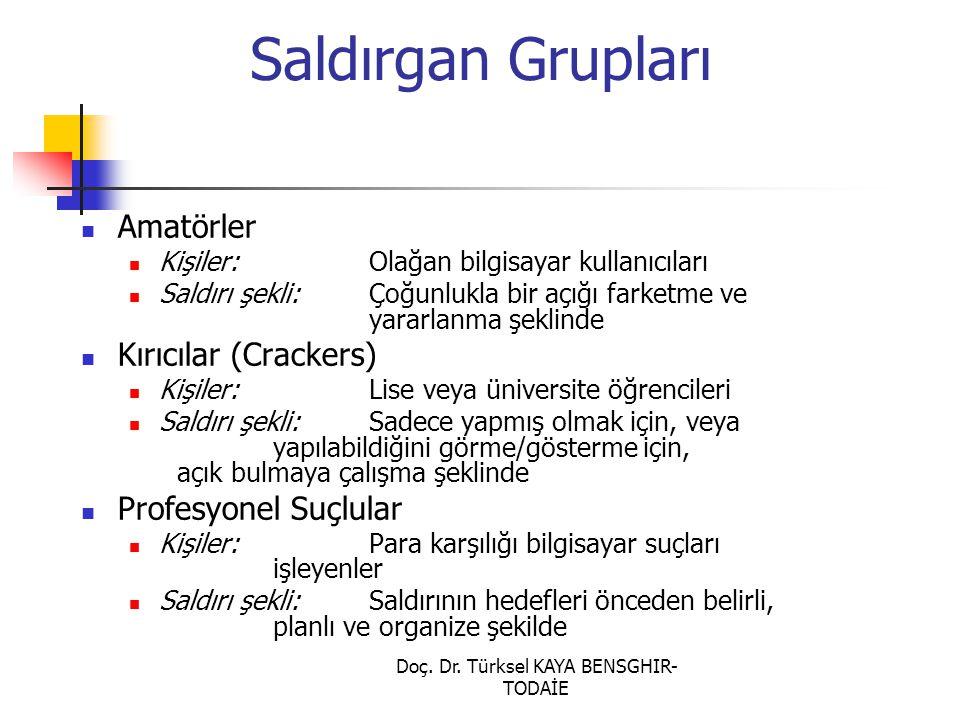 Doç. Dr. Türksel KAYA BENSGHIR- TODAİE Saldırgan Grupları Amatörler Kişiler: Olağan bilgisayar kullanıcıları Saldırı şekli: Çoğunlukla bir açığı farke