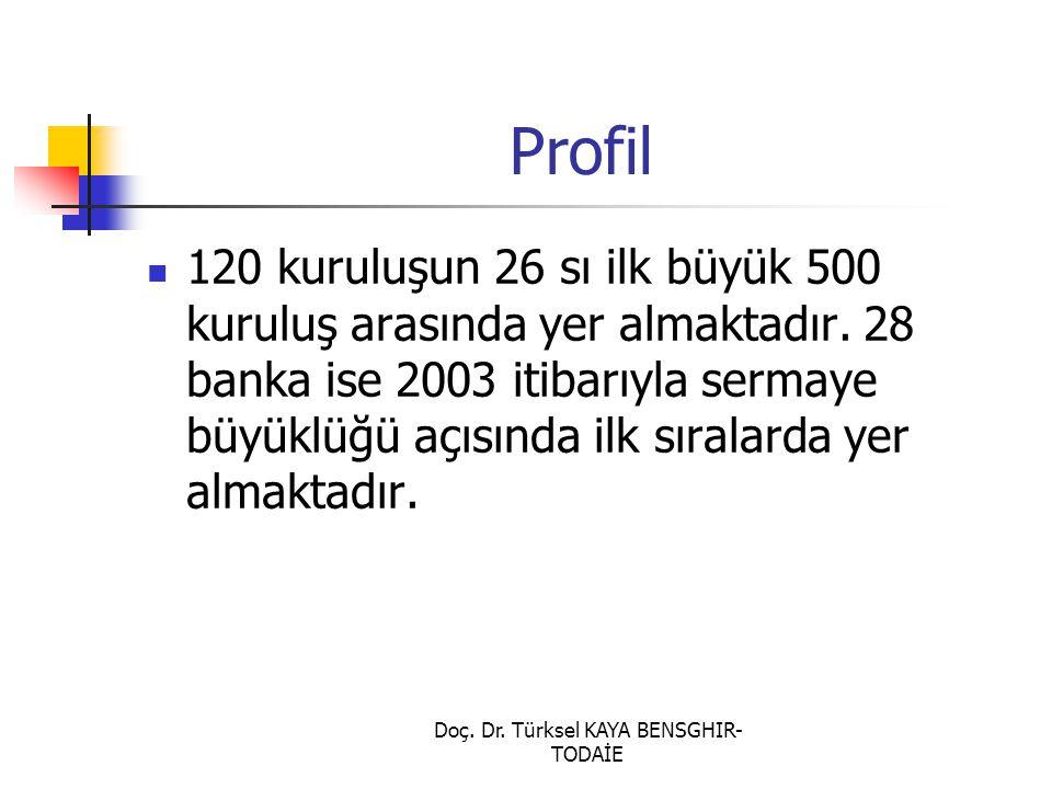 Doç. Dr. Türksel KAYA BENSGHIR- TODAİE Profil 120 kuruluşun 26 sı ilk büyük 500 kuruluş arasında yer almaktadır. 28 banka ise 2003 itibarıyla sermaye