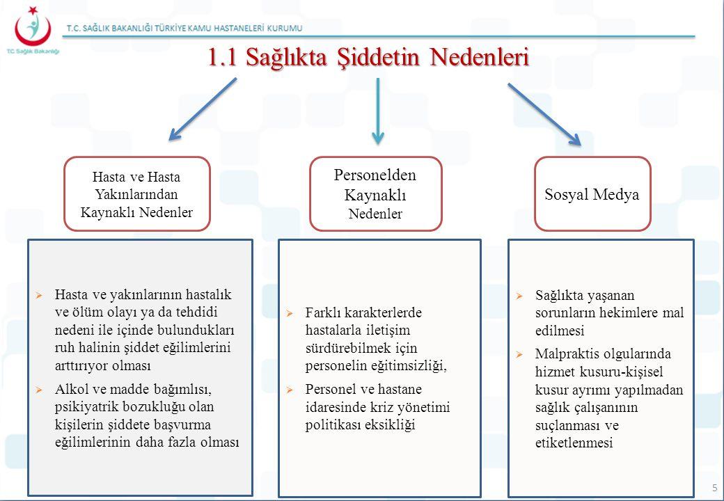 1.1 Sağlıkta Şiddetin Nedenleri Hasta ve Hasta Yakınlarından Kaynaklı Nedenler Personelden Kaynaklı Nedenler Sosyal Medya  Hasta ve yakınlarının hast