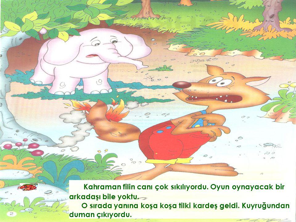 Kahraman filin canı çok sıkılıyordu.Oyun oynayacak bir arkadaşı bile yoktu.