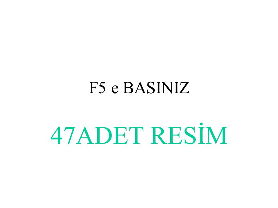 F5 e BASINIZ 47ADET RESİM