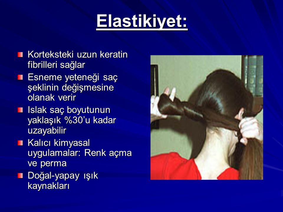 Elastikiyet: Korteksteki uzun keratin fibrilleri sağlar Esneme yeteneği saç şeklinin değişmesine olanak verir Islak saç boyutunun yaklaşık %30'u kadar