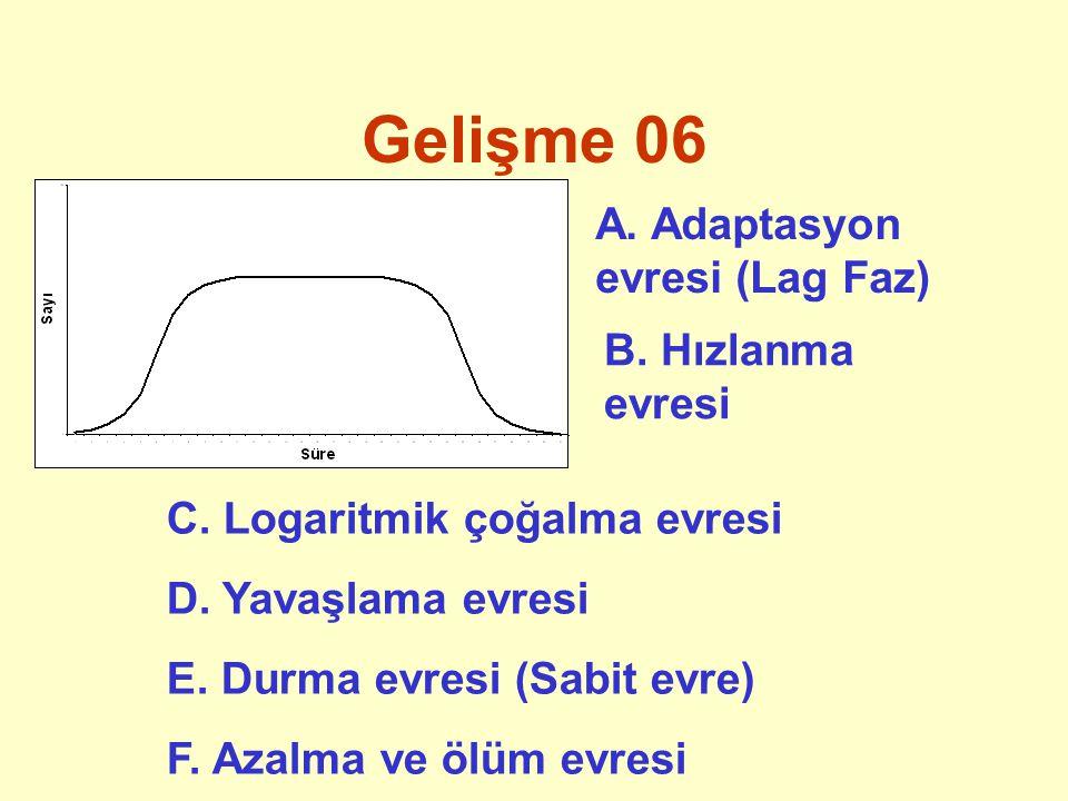 O/ R potansiyeli 01 Genel olarak ifade edildiği şekli ile Metabolizmada son hidrojen elektronu akseptörüne göre 4 farklı solunum şekli vardır: *Aerop: Solunum için O 2 gereklidir.