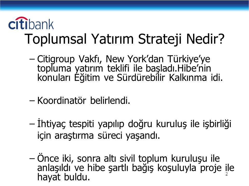 2 Toplumsal Yatırım Strateji Nedir? –Citigroup Vakfı, New York'dan Türkiye'ye topluma yatırım teklifi ile başladı.Hibe'nin konuları Eğitim ve Sürdüreb
