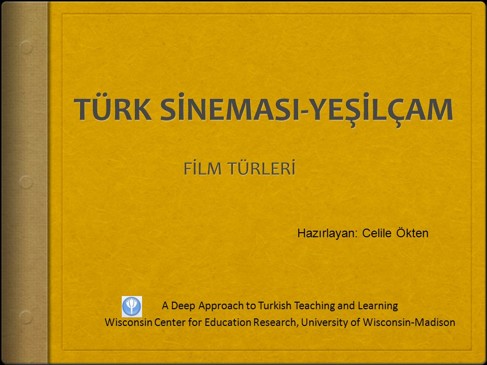 A Deep Approach to Turkish Teaching and Learning Wisconsin Center for Education Research, University of Wisconsin-Madison Hazırlayan: Celile Ökten