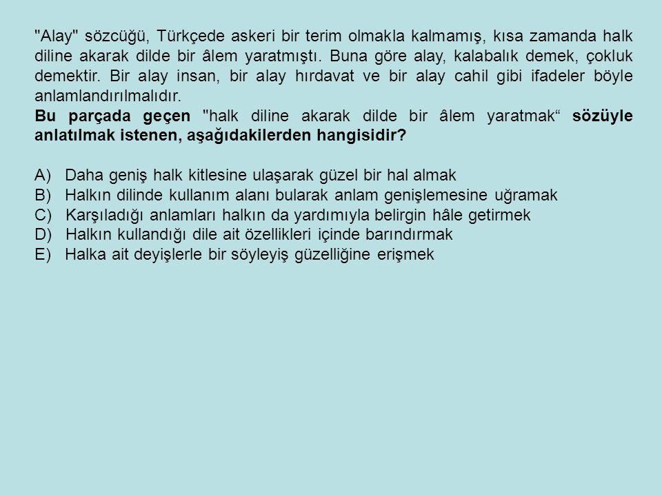 Alay sözcüğü, Türkçede askeri bir terim olmakla kalmamış, kısa zamanda halk diline akarak dilde bir âlem yaratmıştı.