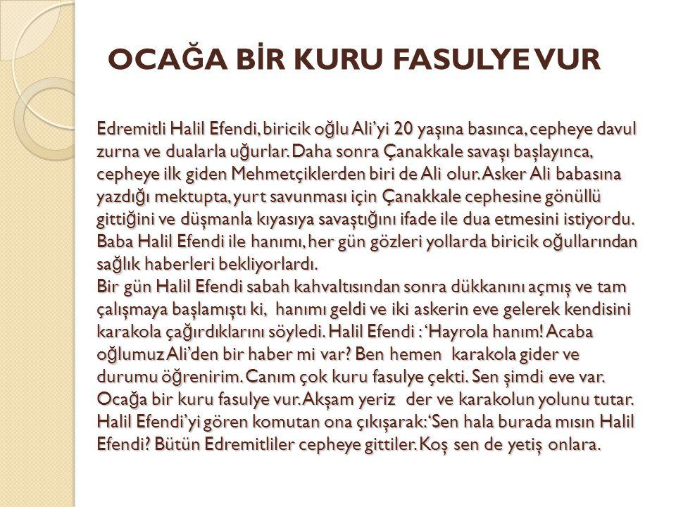 Edremitli Halil Efendi, biricik o ğ lu Ali'yi 20 yaşına basınca, cepheye davul zurna ve dualarla u ğ urlar. Daha sonra Çanakkale savaşı başlayınca, ce