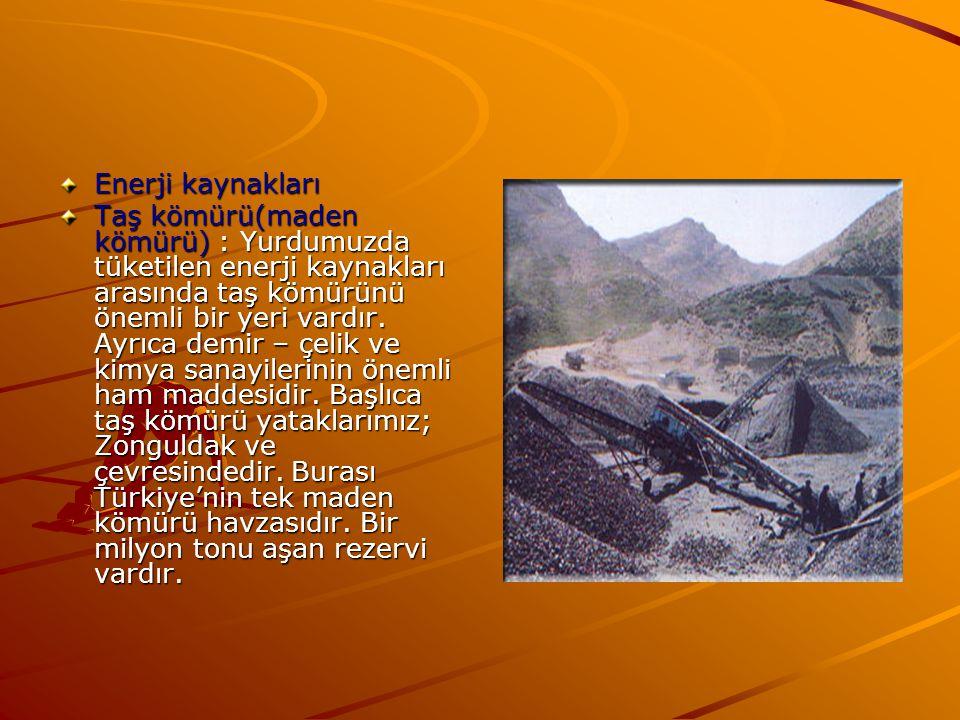 Enerji kaynakları Taş kömürü(maden kömürü) : Yurdumuzda tüketilen enerji kaynakları arasında taş kömürünü önemli bir yeri vardır. Ayrıca demir – çelik