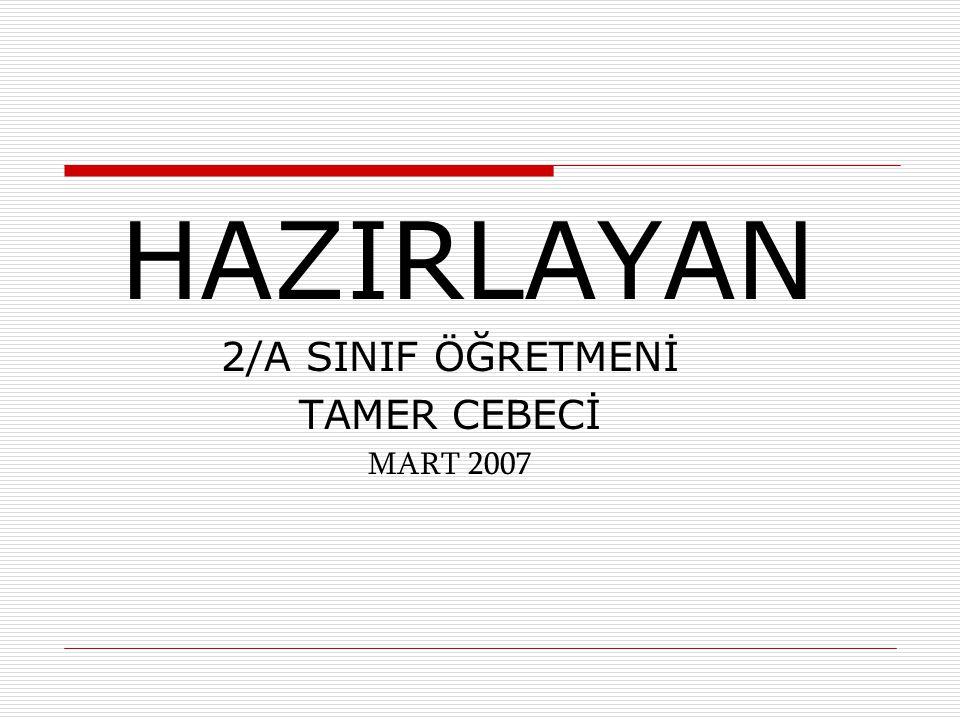 HAZIRLAYAN 2/A SINIF ÖĞRETMENİ TAMER CEBECİ MART 2007