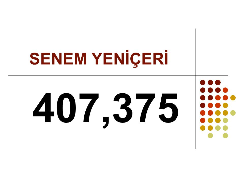 SENEM YENİÇERİ 407,375