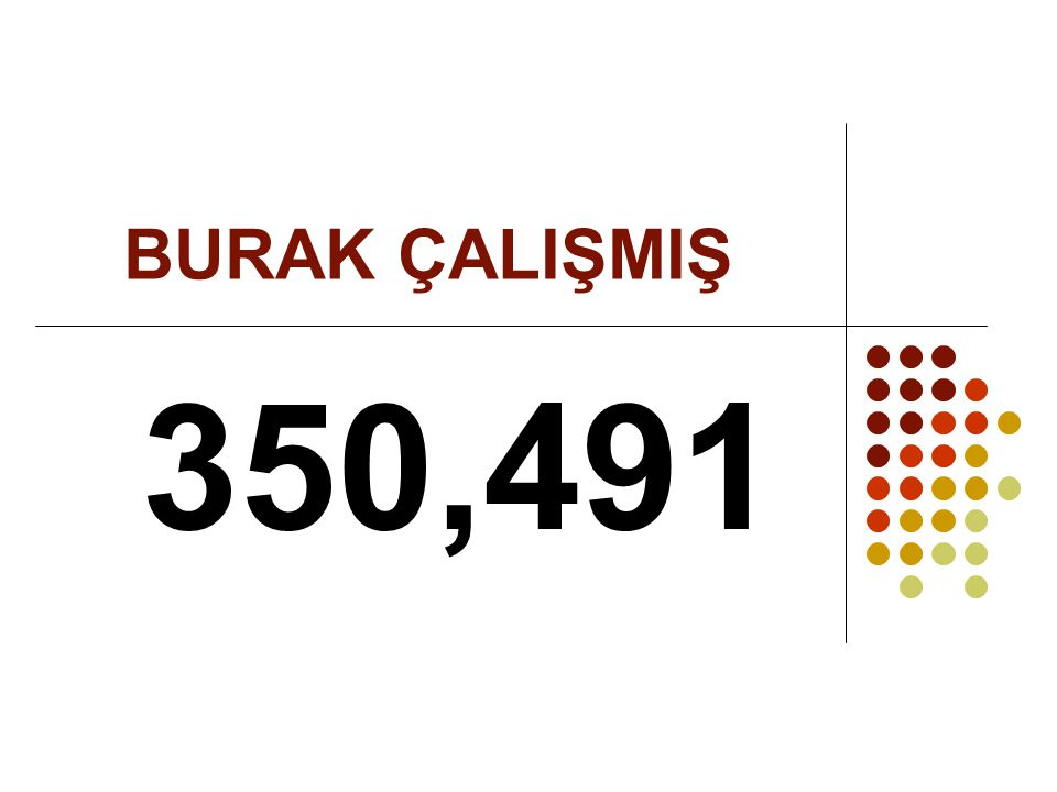 BURAK ÇALIŞMIŞ 350,491