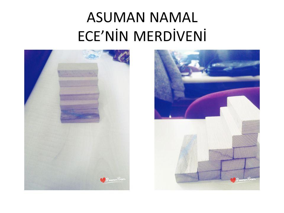 ASUMAN NAMAL ECE'NİN MERDİVENİ