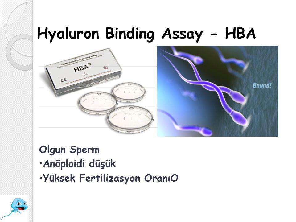 Olgun Sperm Anöploidi düşük Yüksek Fertilizasyon OranıO Hyaluron Binding Assay - HBA