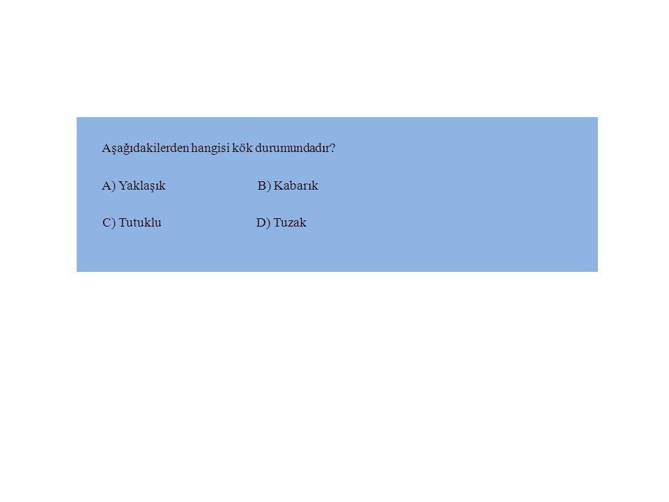 Aşağıdakilerden hangisi kök durumundadır? A) Yaklaşık B) Kabarık C) Tutuklu D) Tuzak