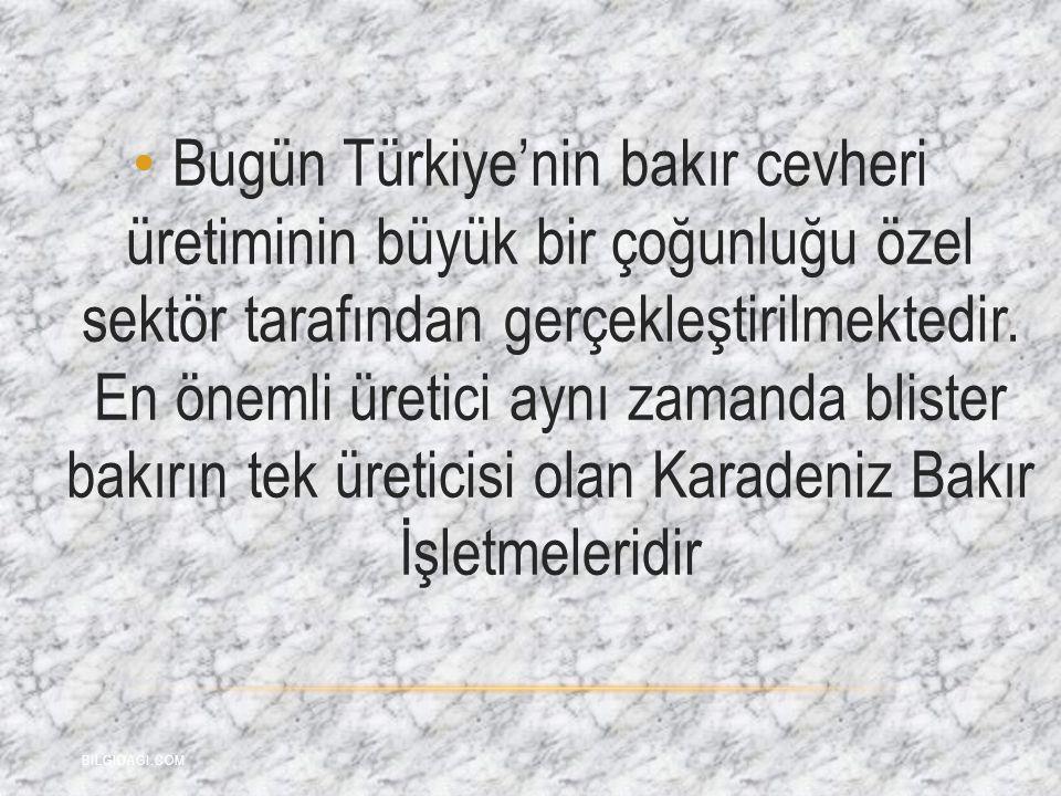 Bugün Türkiye'nin bakır cevheri üretiminin büyük bir çoğunluğu özel sektör tarafından gerçekleştirilmektedir. En önemli üretici aynı zamanda blister b