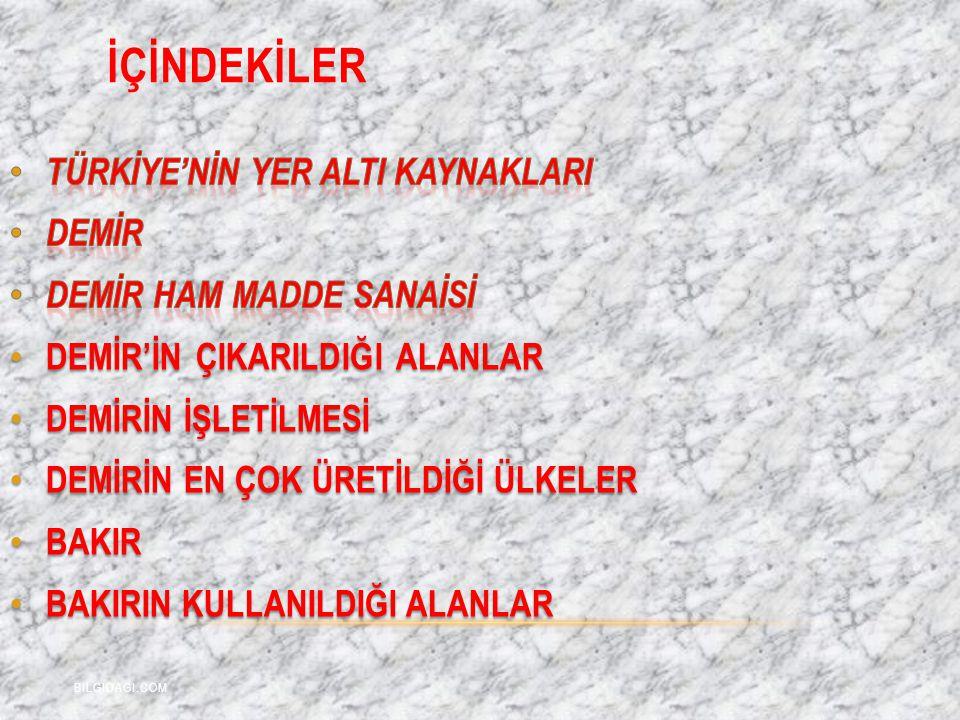 İÇİNDEKİLER BILGIDAGI.COM