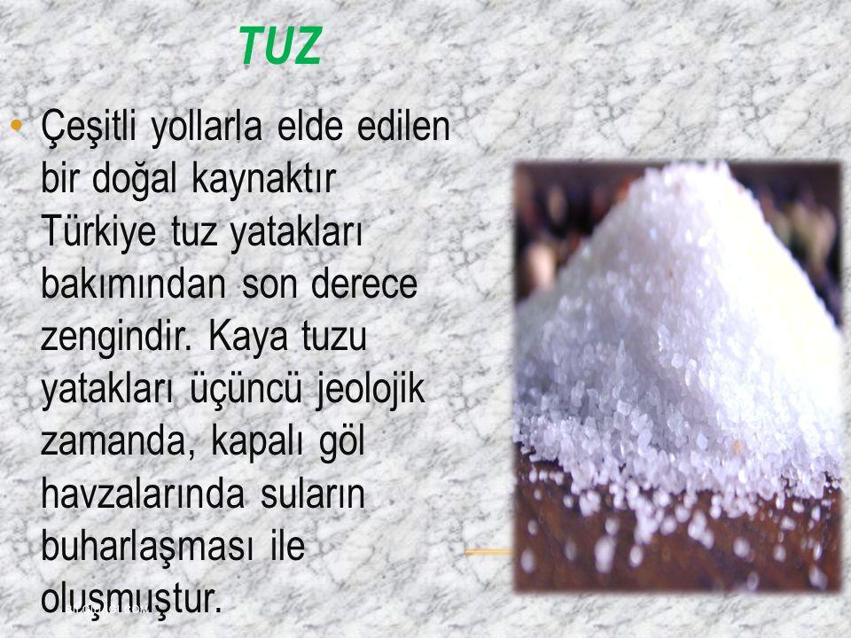 TUZ Çeşitli yollarla elde edilen bir doğal kaynaktır Türkiye tuz yatakları bakımından son derece zengindir. Kaya tuzu yatakları üçüncü jeolojik zamand