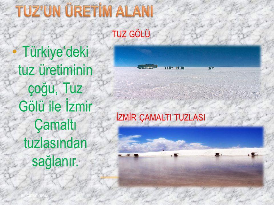 Türkiye'deki tuz üretiminin çoğu, Tuz Gölü ile İzmir Çamaltı tuzlasından sağlanır. TUZ GÖLÜ İZMİR ÇAMALTI TUZLASI BILGIDAGI.COM