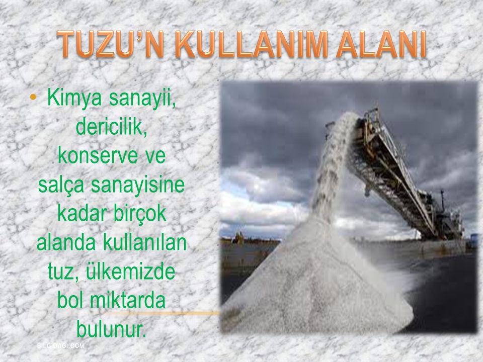 Kimya sanayii, dericilik, konserve ve salça sanayisine kadar birçok alanda kullanılan tuz, ülkemizde bol miktarda bulunur. BILGIDAGI.COM