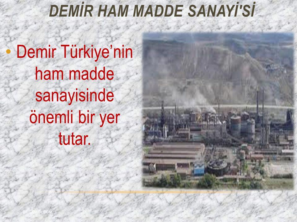 Demir Türkiye'nin ham madde sanayisinde önemli bir yer tutar. DEMİR HAM MADDE SANAYİ'Sİ BILGIDAGI.COM