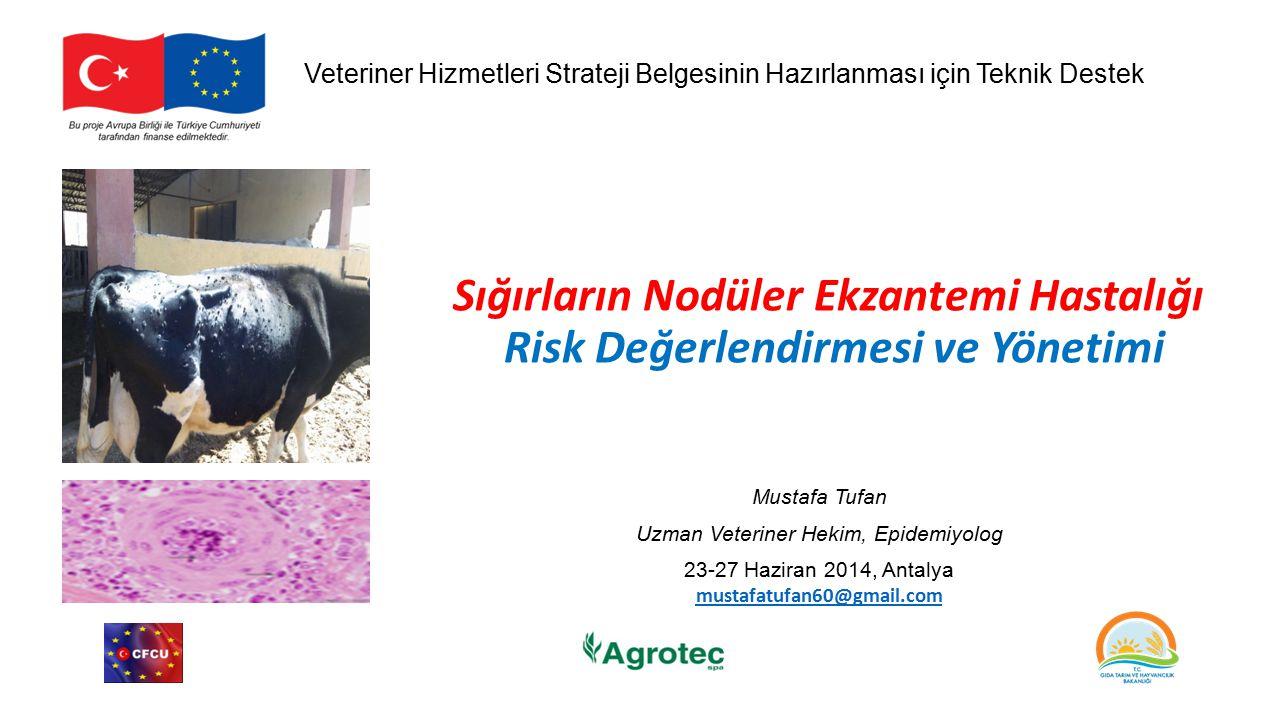 Sığırların Nodüler Ekzantemi Hastalığı Risk Değerlendirmesi ve Yönetimi Mustafa Tufan Uzman Veteriner Hekim, Epidemiyolog 23-27 Haziran 2014, Antalya