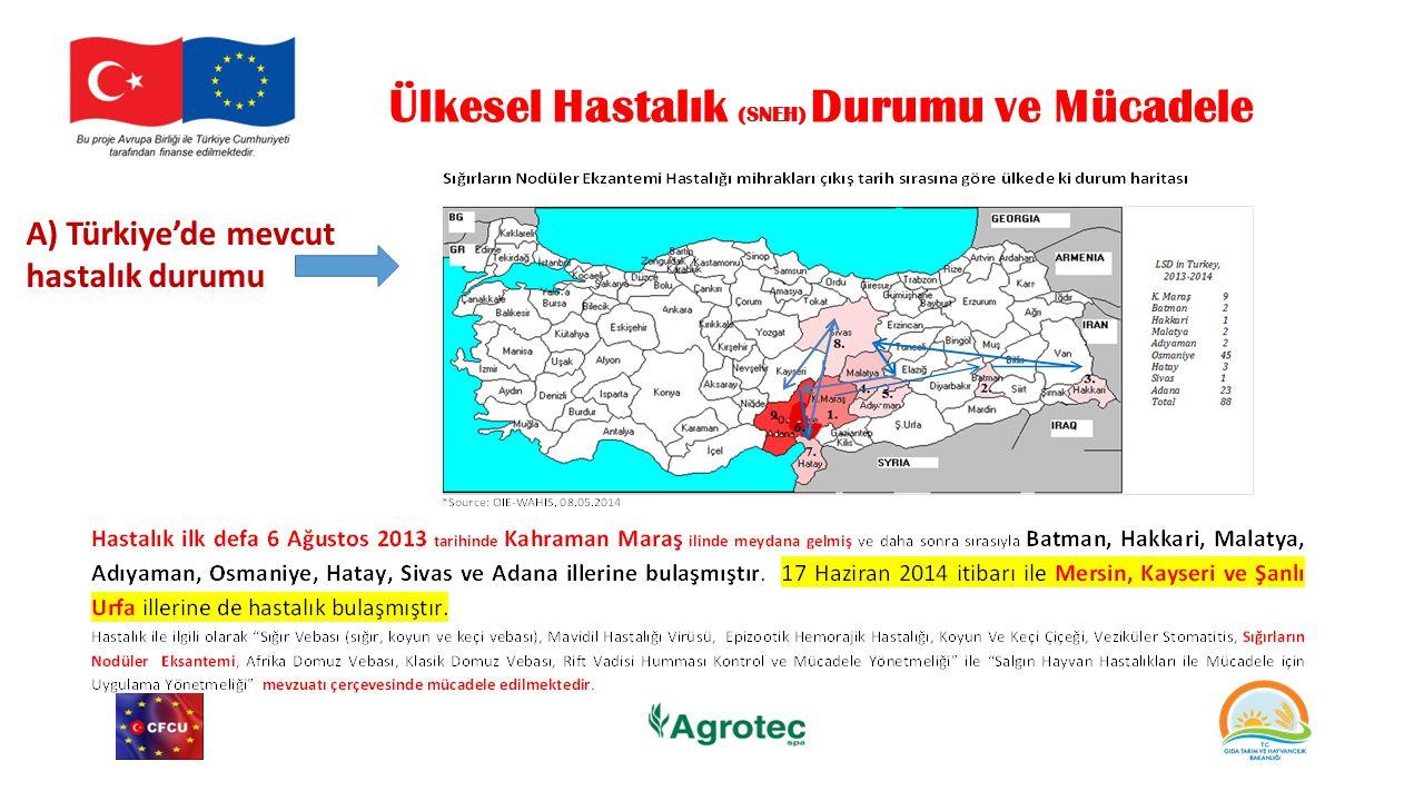 Ülkesel Hastalık (SNEH) Durumu ve Mücadele A) Türkiye'de mevcut hastalık durumu