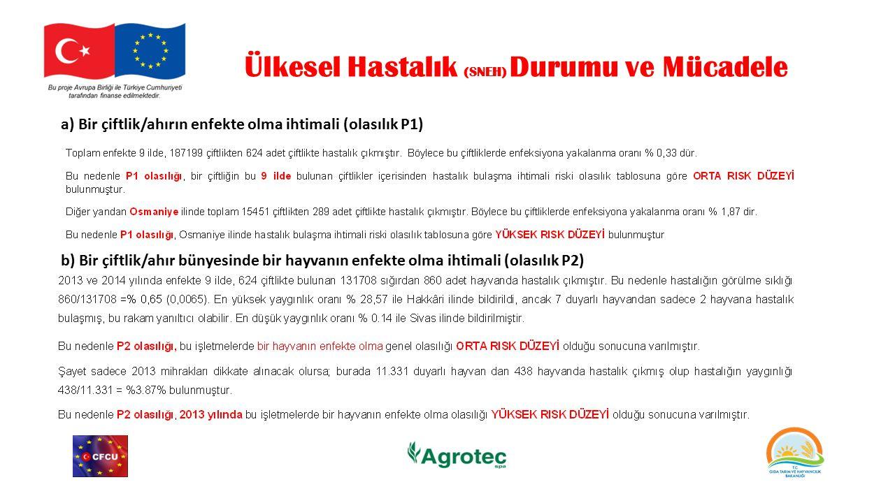 Ülkesel Hastalık (SNEH) Durumu ve Mücadele a) Bir çiftlik/ahırın enfekte olma ihtimali (olasılık P1) b) Bir çiftlik/ahır bünyesinde bir hayvanın enfek