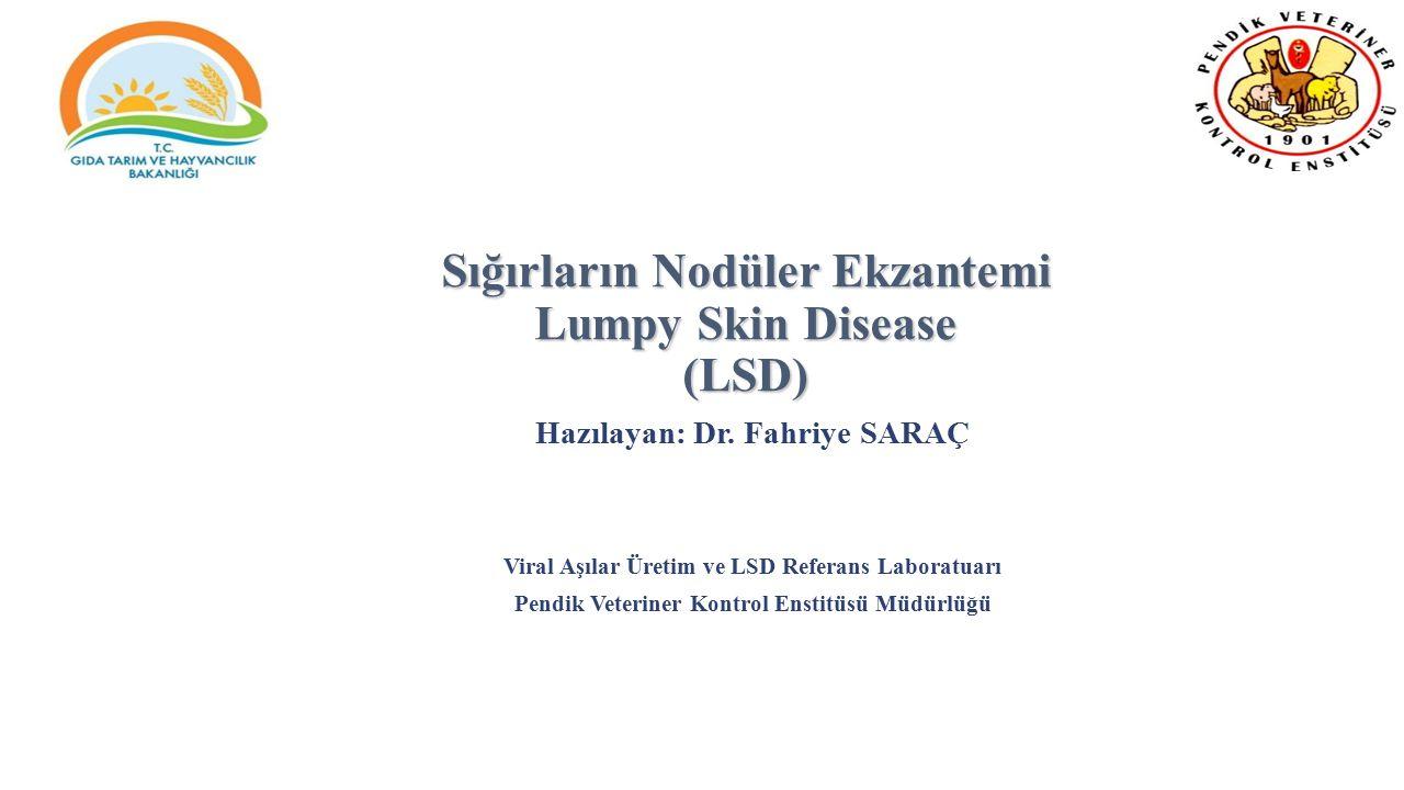 Sığırların Nodüler Ekzantemi Lumpy Skin Disease (LSD) Hazılayan: Dr. Fahriye SARAÇ Viral Aşılar Üretim ve LSD Referans Laboratuarı Pendik Veteriner Ko