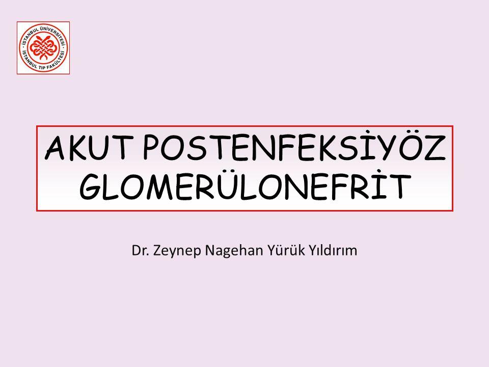 Dr. Zeynep Nagehan Yürük Yıldırım AKUT POSTENFEKSİYÖZ GLOMERÜLONEFRİT