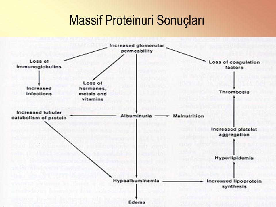 Massif Proteinuri Sonuçları