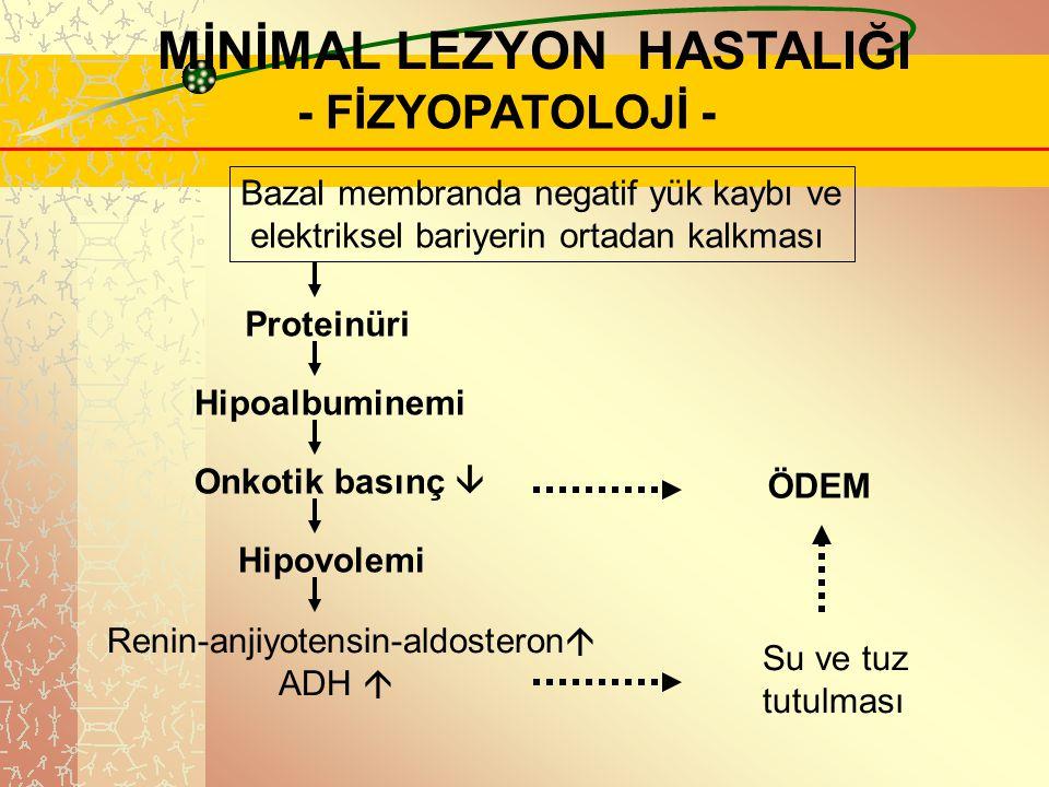 .. MİNİMAL LEZYON HASTALIĞI - FİZYOPATOLOJİ - Bazal membranda negatif yük kaybı ve elektriksel bariyerin ortadan kalkması Proteinüri Hipoalbuminemi On