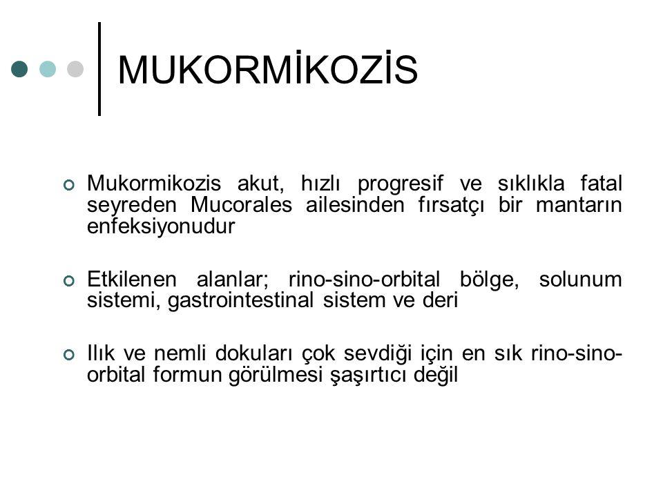 MUKORMİKOZİS Mukormikozis akut, hızlı progresif ve sıklıkla fatal seyreden Mucorales ailesinden fırsatçı bir mantarın enfeksiyonudur Etkilenen alanlar