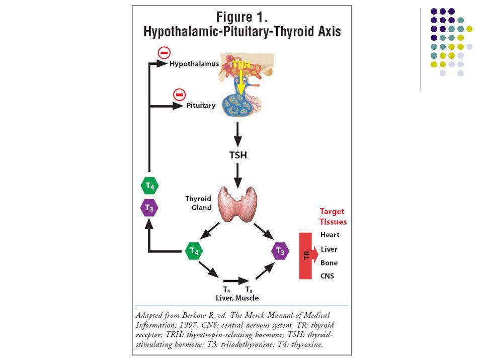 Tanı Tarama çok önemli İdeal tarama zamanı 2-6 günler Düşük T4 ( 40 µU/mL) konjenital hipotiroidiyi destekler Sınırda TSH düzeyleri (20-40 µU/mL) tekrarlanmalıdır Tiroid sintigrafisi Tutulum yok → tiroid agenezisi, iyot yakalama defekti, tirotropin reseptör bloke edici Ak Tutulum var → tiroksin sentez defekti