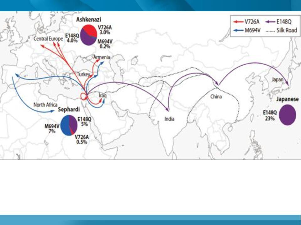 M694V:Sefarad Yahudileri, Türklerde sık (7.000 yıl) V726A:Aşkenazi Yahudileri (15.000 yıl) E148Q:Avrupa'da en sık, Türk taşıyıcılar (30.000 yıl)