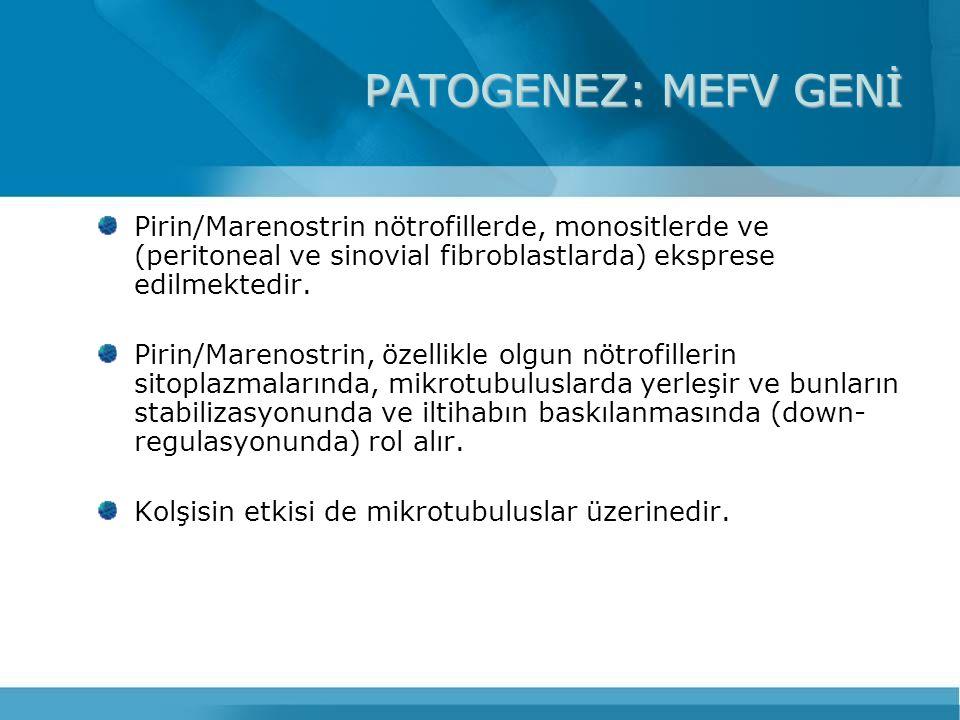 PATOGENEZ: MEFV GENİ Pirin/Marenostrin nötrofillerde, monositlerde ve (peritoneal ve sinovial fibroblastlarda) eksprese edilmektedir. Pirin/Marenostri