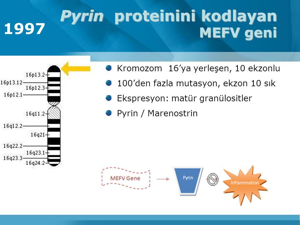 Pyrin proteinini kodlayan MEFV geni Kromozom 16'ya yerleşen, 10 ekzonlu 100'den fazla mutasyon, ekzon 10 sık Ekspresyon: matür granülositler Pyrin / M