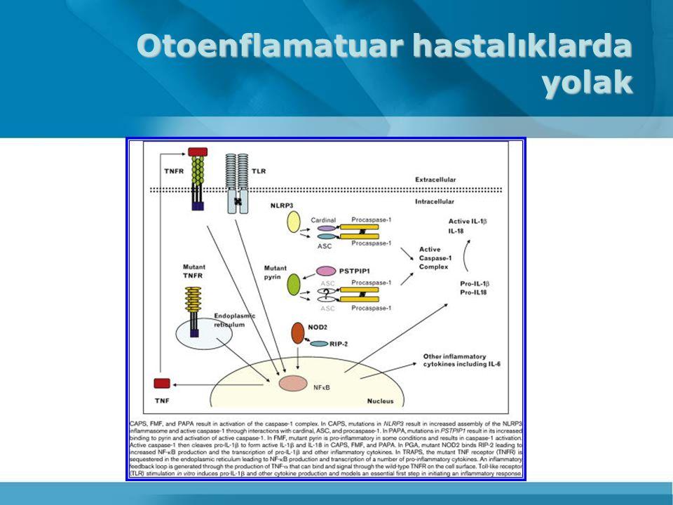 Otoenflamatuar hastalıklar Ailesel Akdeniz ateşi TNF reseptörü ile ilişkli periyodik sendrom(TRAPS) Hiper IgD sendromu Kriyoprinopatiler NLRP12 ile ilişkili sendrom DIRA (İnterlökin 1 reseptör karşıtı eksikliği Kronik yineleyen multifokal osteomiyelit PAPA sendromu Sarkoidoz Crohn hastalığı Gut Yineleyen mol hidatiform