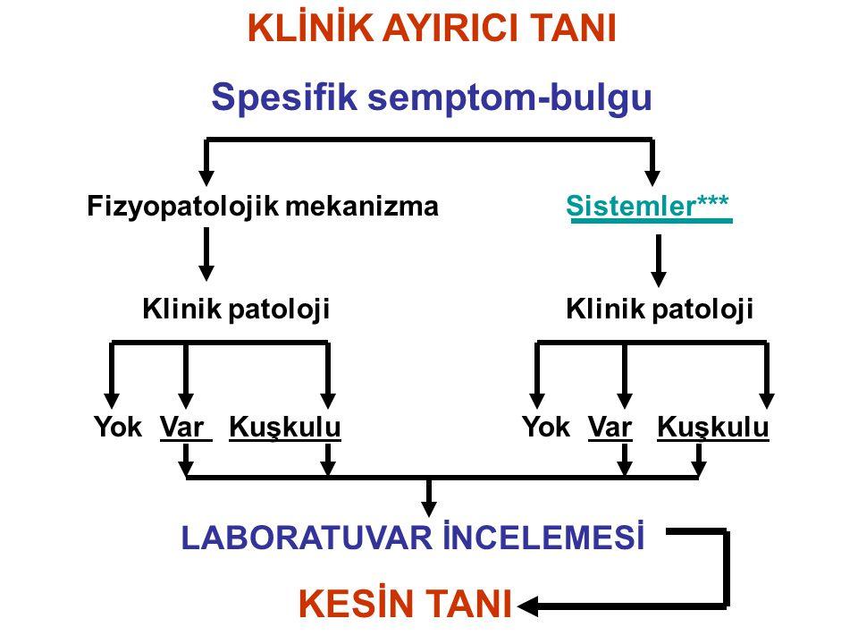 KLİNİK AYIRICI TANI Spesifik semptom-bulgu Fizyopatolojik mekanizma Sistemler*** Klinik patoloji Klinik patoloji Yok Var Kuşkulu Yok Var Kuşkulu LABOR
