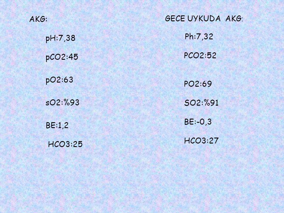 AKG: pH:7,38 pCO2:45 pO2:63 sO2:%93 BE:1,2 HCO3:25 GECE UYKUDA AKG : Ph:7,32 PCO2:52 PO2:69 SO2:%91 BE:-0,3 HCO3:27